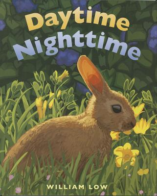 Daytime Nighttime By Low, William/ Low, William (ILT)